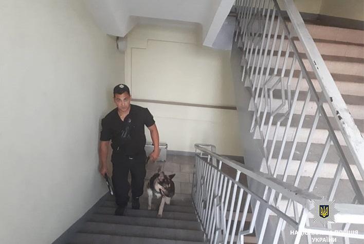 Поліцейські встановлюють всі обставини події / Фото dp.npu.gov.ua