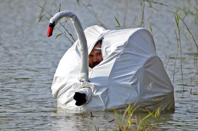 Фотограф должен быть мастером маскировки / из открытых источников