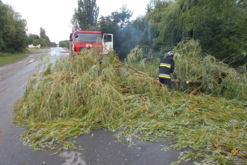На Тернопільщині буревій повалив дерева / Фото ДСНС