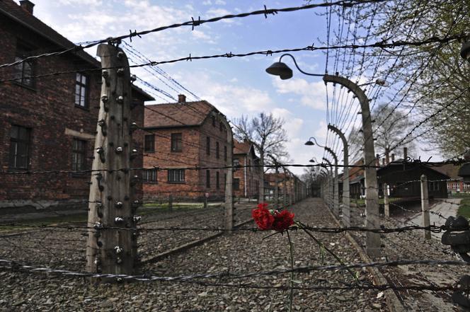 Освенцим / parool.nl