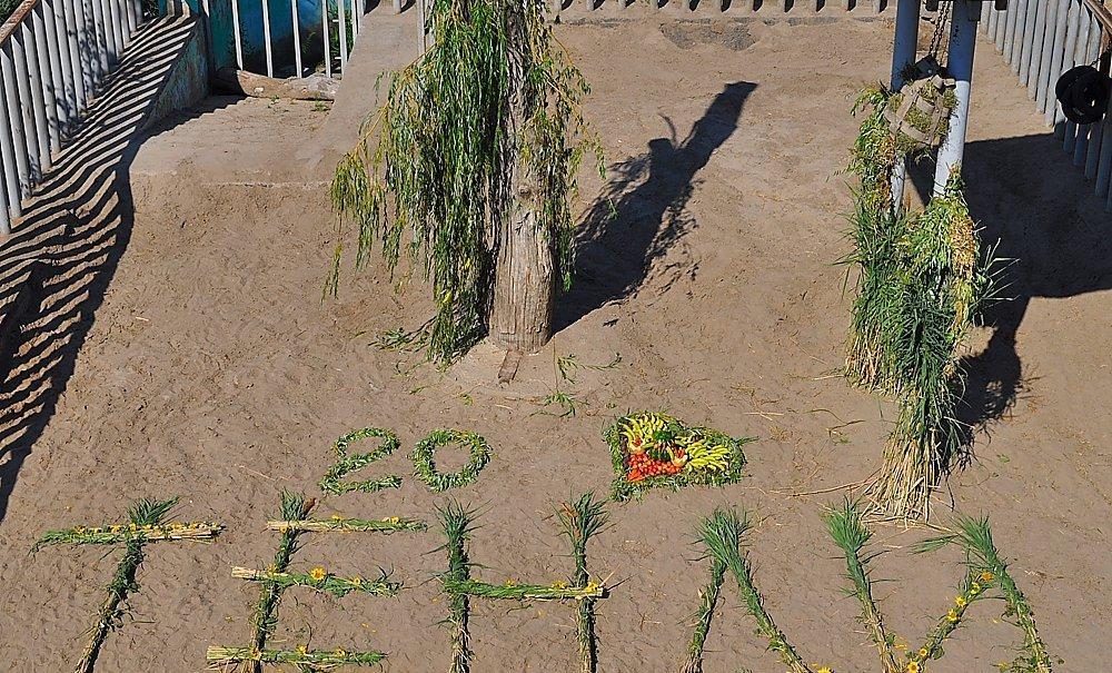 В честь дня рождения слонихи в зоопарке выложили надпись «Тенди 20» \ city.kharkov.ua