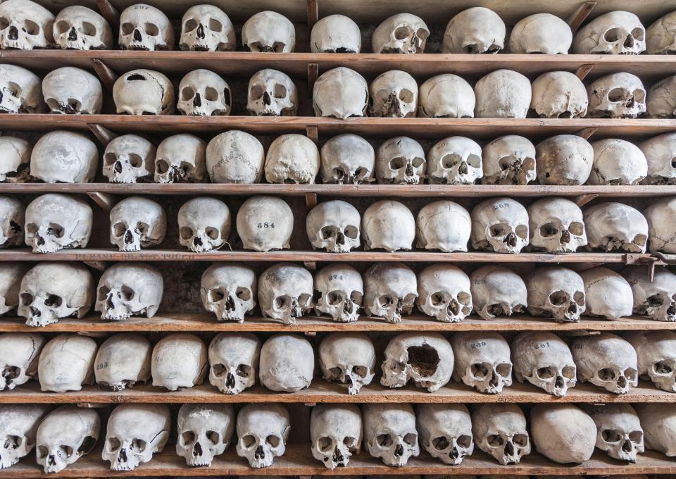 Злочинці викрали з невідомою метою 21 череп / thesun.co.uk