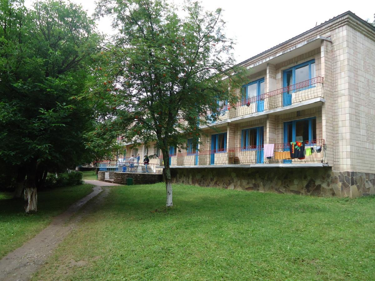 Дитячий табір «Лісовий» у селі Скоморохи є одним з найкращих в області, на його території розташоване озеро, поруч протікає річка Стрипа / фото www.ukrtour.pro