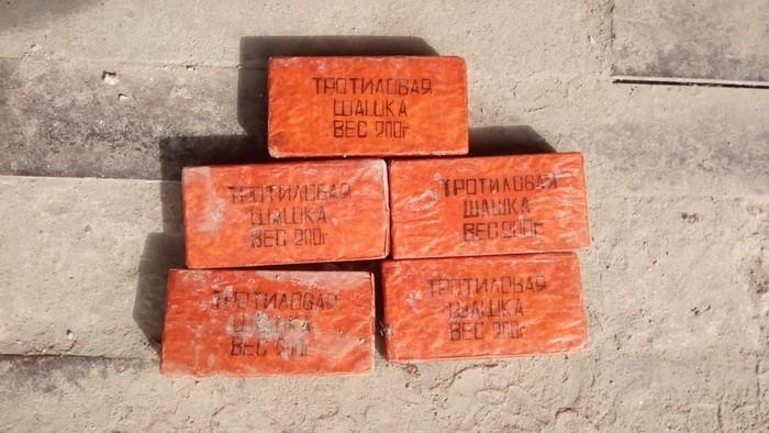 Правоохоронці затримали організатора угруповання в Малині при спробі продажу тротилової шашки / фото прес-центр СБУ