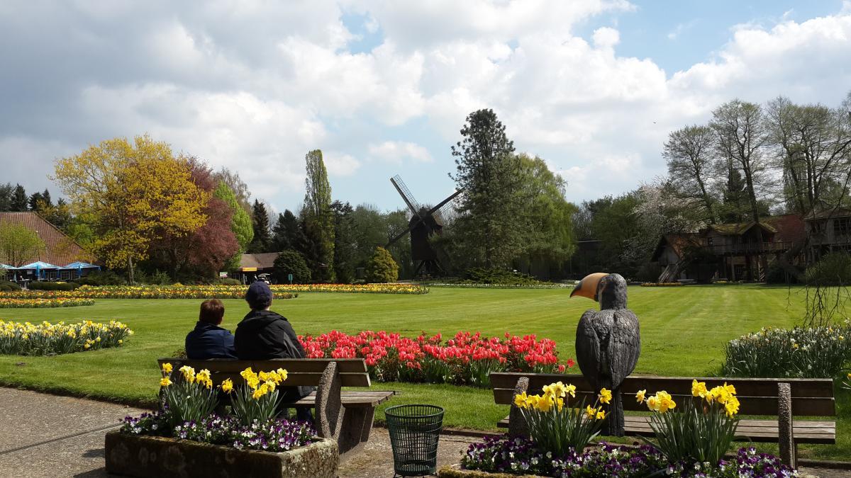В немецком Weltvogelpark Walsrode можно затеряться среди птиц и цветов на пару дней / Фото Марина Григоренко