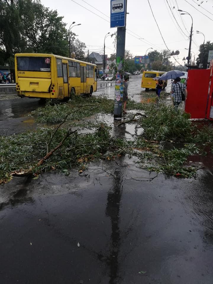 Не тільки вода лилася на голови киян, але й падали гілки / фото Alexandr Bosenko