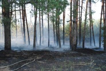 Синоптики попереджають про надзвичайну пожежну небезпеку в Україні