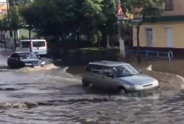 Мощный ливень затопил улицы Житомира (видео)