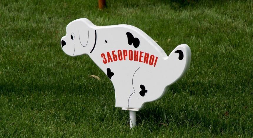 У Львові зобов'язали власників собак прибирати за своїми улюбленцями