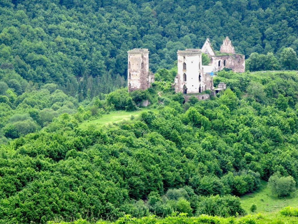 Замок у Ниркові / Фото castlesua.jimdo.com