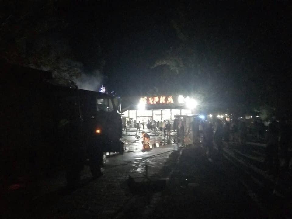 На Миколаївщині сталася масштабна пожежа біля бази відпочинку / фото ДСНС