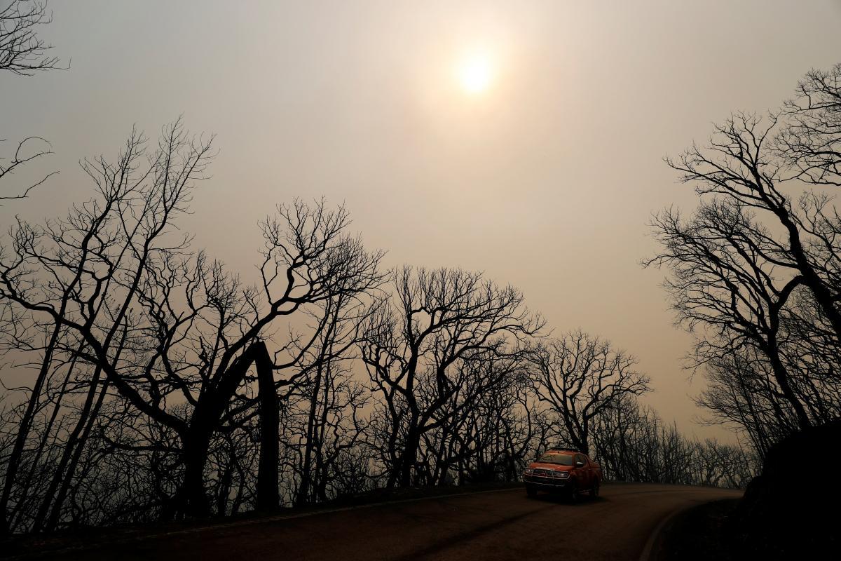 У Португалії вирують лісові пожежі / REUTERS