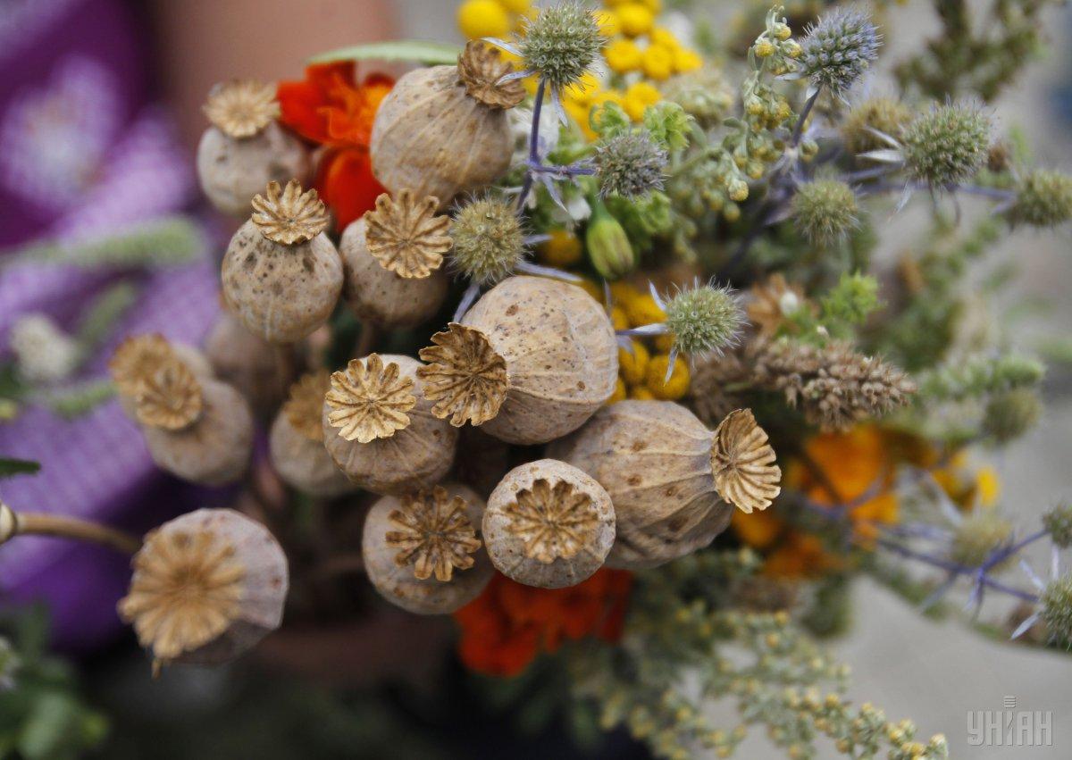 14 августа празднуют Медовый Спас или Маковея / фото УНИАН