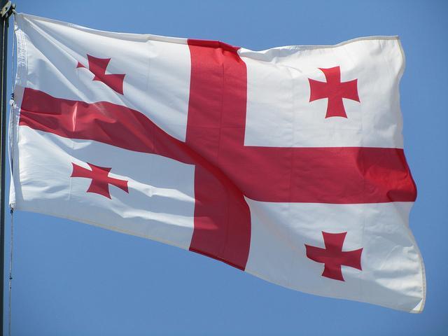 США должны былиболее твердо отстаивать интересы Грузии, признает конгрессмен/ Flickr/Leo Koolhoven