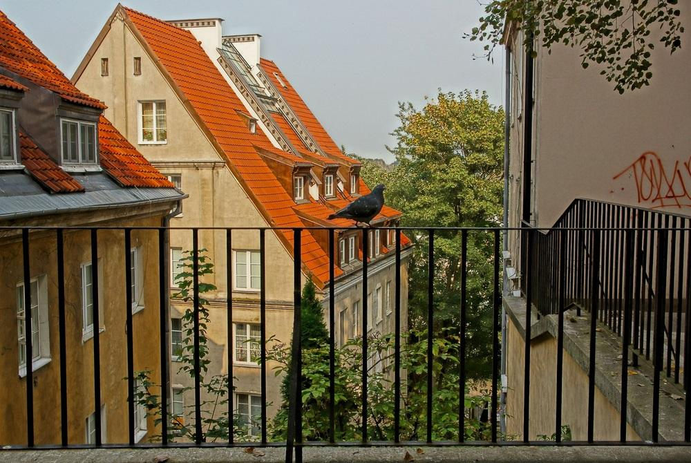 Все больше жилой недвижимости в Варшаве принадлежит украинцам / Фото Jurek.P via flickr.com