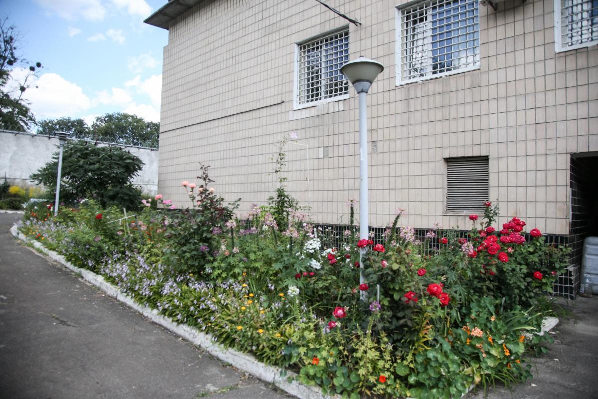 За великим парканом - величезне різнобарв'я квітів на клумбах / фото УНІАН