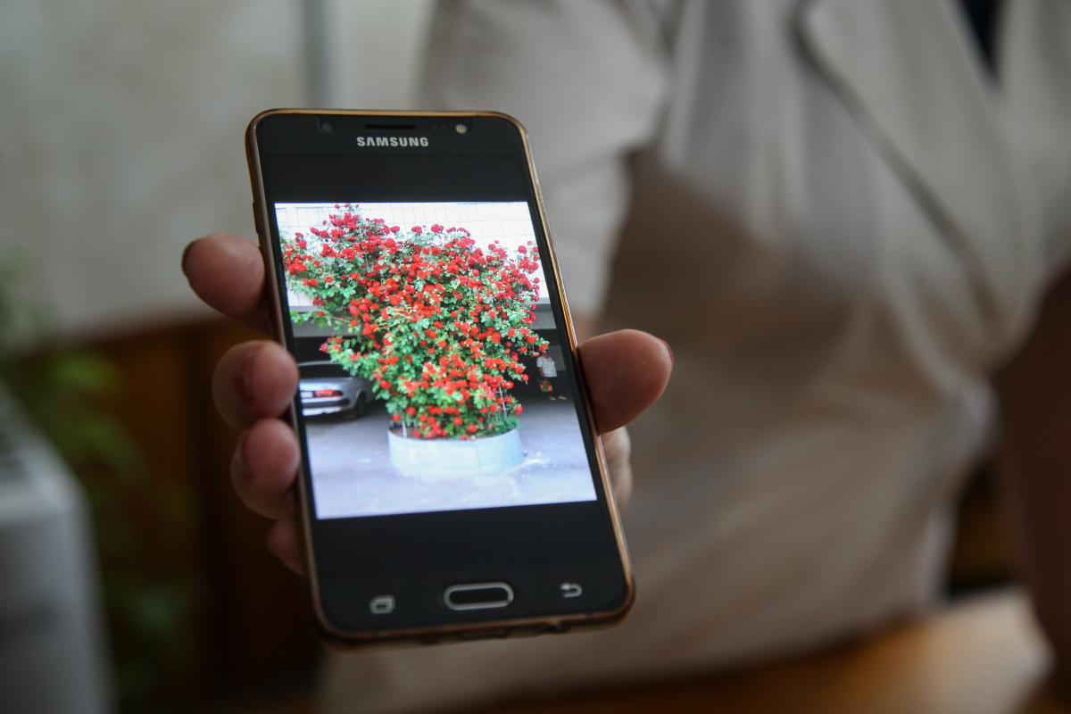 Фотографувати квіти тут – норма, але пацієнтівта персоналне можна / фото УНІАН