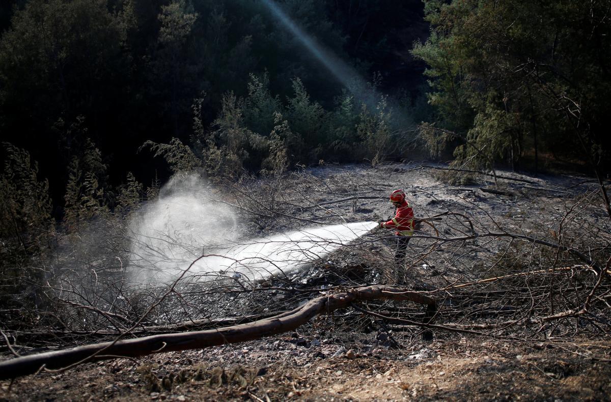 В Португалии продолжают бушевать лесные пожары / REUTERS