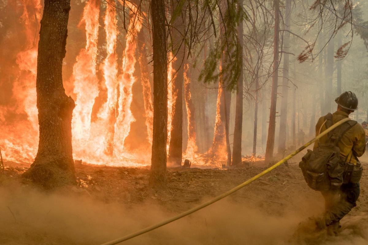 Пожары в Калифорнии не удастся потушить до конца августа / REUTERS