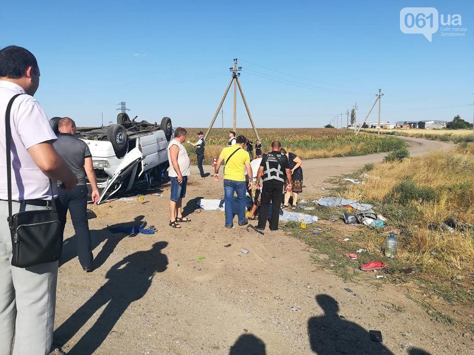 В результаті ДТП в Запорізькій області загинули шість осіб / фото 061