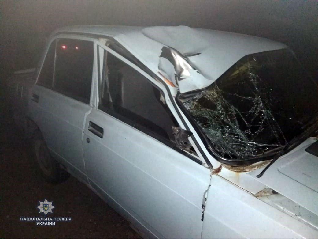 """На Херсонщині водій на """"Жигулях"""" збив двох бійців ВСУ / фото npu.gov.ua"""