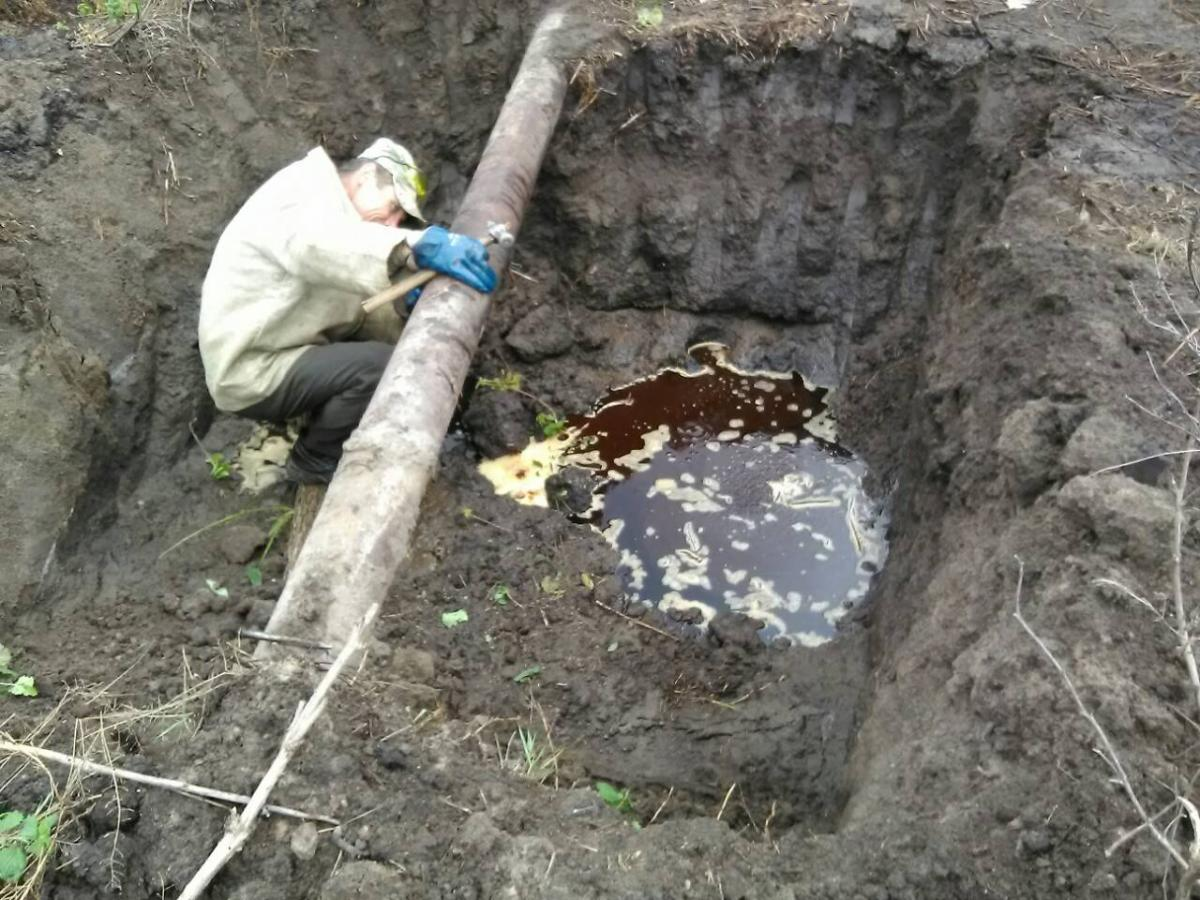 Против «Гайсинского спиртзавода» возбудили дело за загрязнение экологии