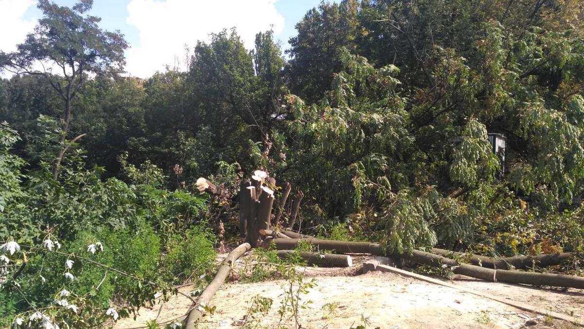 Данный земельный участок еще при Черновецком был переданв аренду на 5 лет для обслуживания, потом целевое назначение было изменено / Фото kievvlast.com.ua