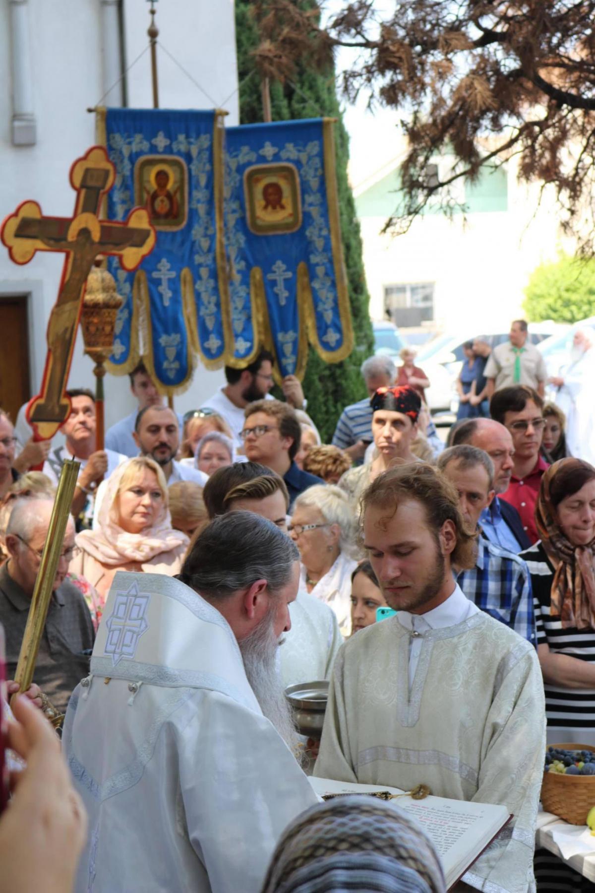 / synod.com