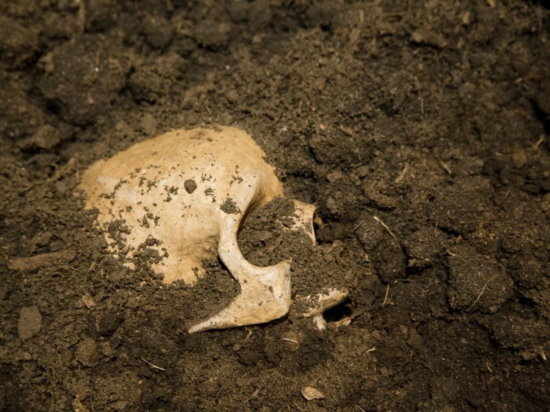 Исследователи нашли множество ям с черепами