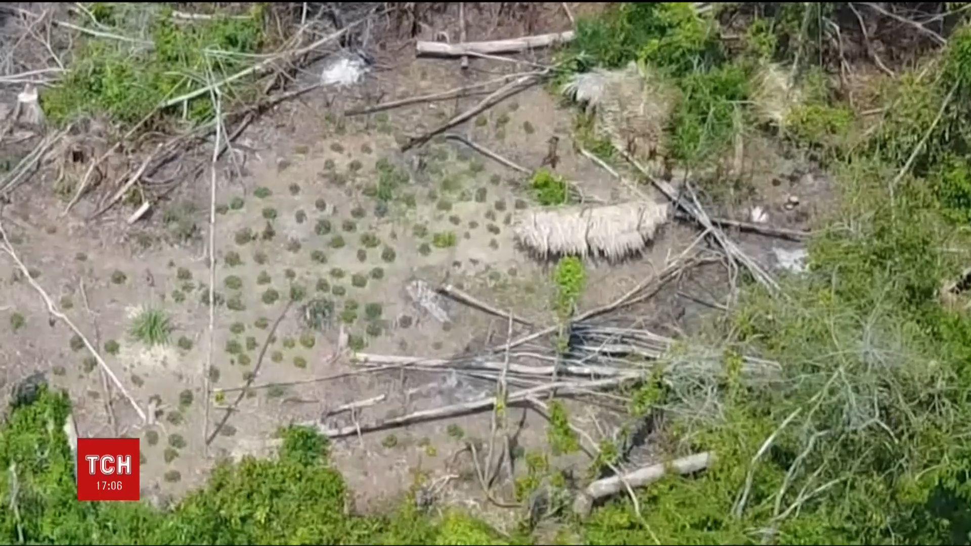 Бразильские аборигены живут в зеленом раю, куда не добрались ни колонизаторы, ни застройщики, ни добытчики ресурсов / Кадр из видео ТСН