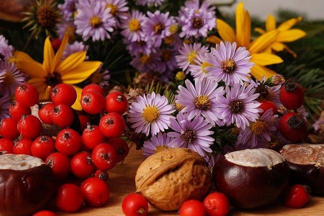 Сегодня празднуют Ореховый Спас / фото pixabay.com