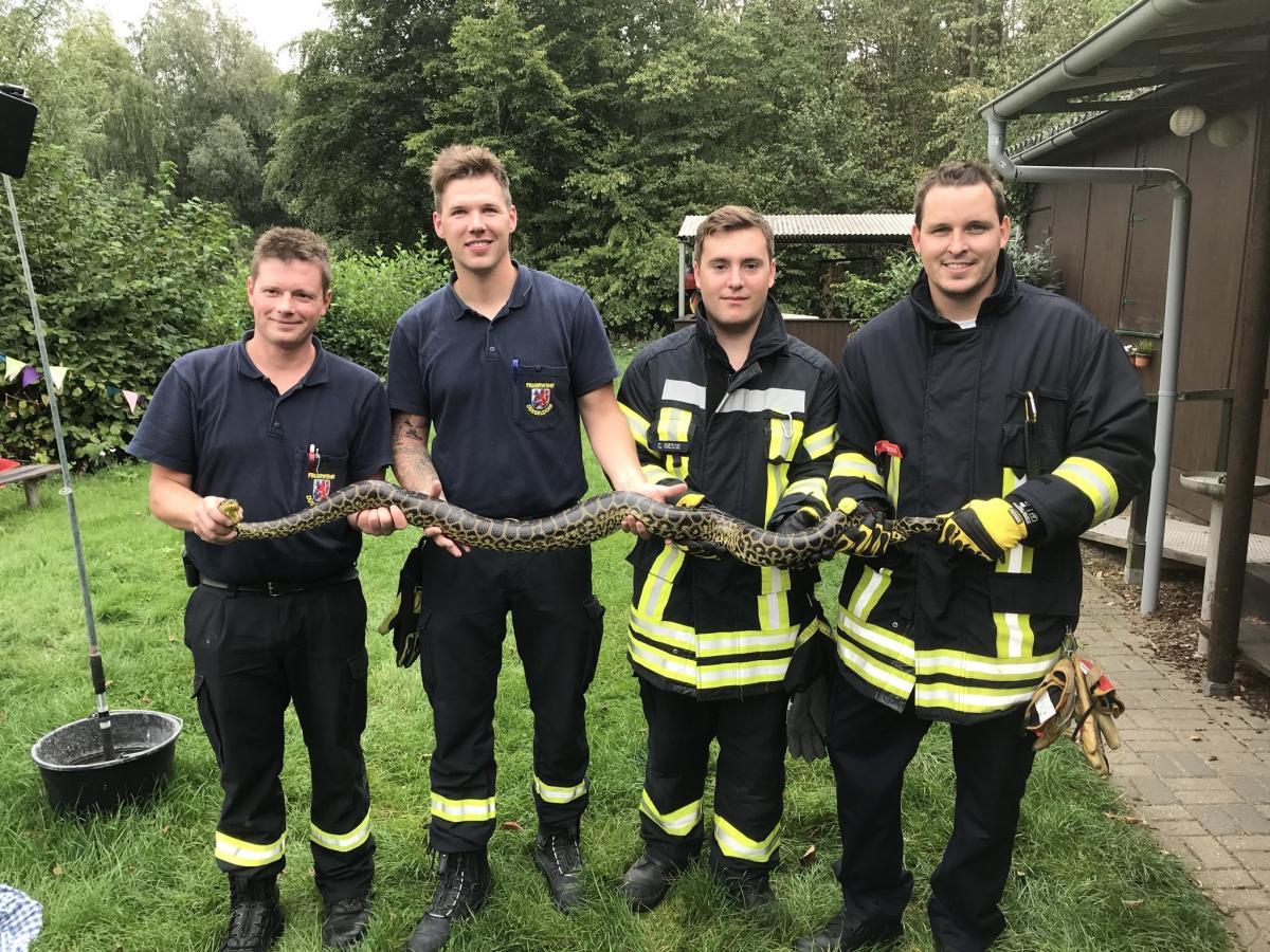 Пожарные поймать 2,4-метровую змею / фото twitter.com/FWMeerbusch