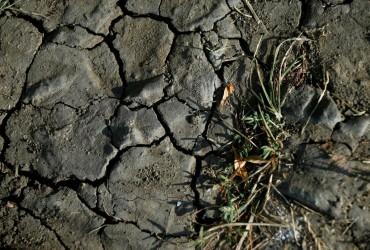 Центральный Китай страдает от засухи, людям не хватает питьевой воды