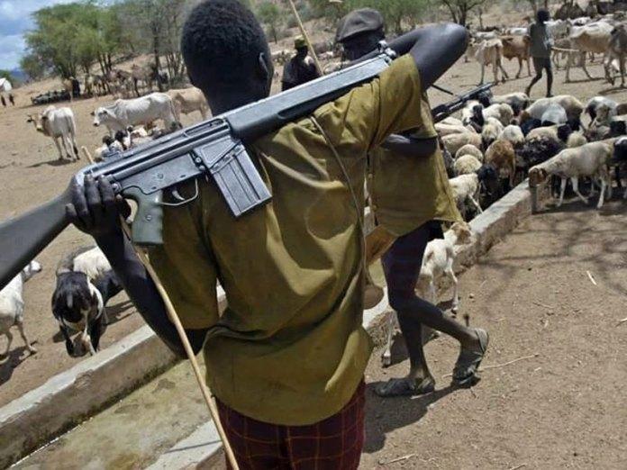 В Нигерии боевики убили священника с семьей / dailypost.ng