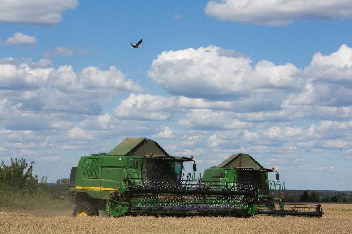 В агрохолдинге весьма довольны использованием IT-технологий / фото УНИАН