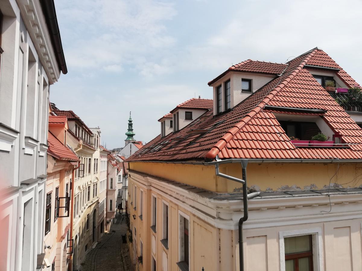 Вид со Старых стен на Старый город / Фото Марина Григоренко