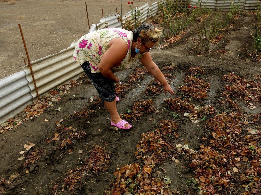 Местные жители жалуются на сильное першение в горле / фото RoksolanaToday&Крым