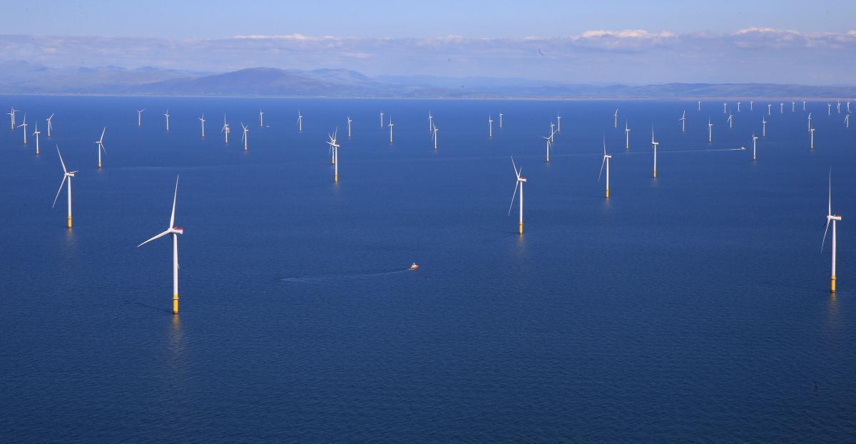 Посмотрите, как выглядит крупнейшая вмире плавучая ветряная электростанция из87 ветрогенераторов