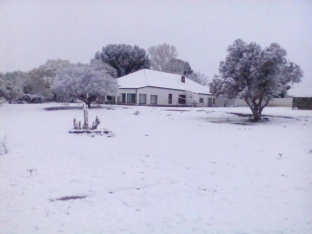 В ЮАР выпал снег / twitter.com/SnowReportSA