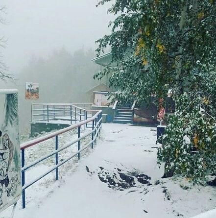 В Красноярском крае выпал снег / www.instagram.com/biysk_moy_gorod/