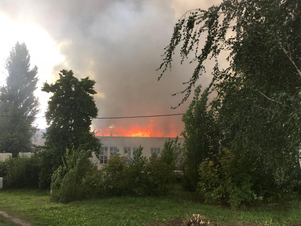 The surface of the fire is now about three thousand square meters. m. / Image zhytomyr.dsns.gov.ua