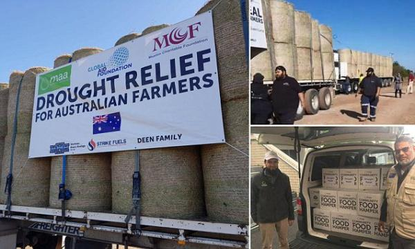 Мусульмани відвезли фермерам три вантажівки сіна / islam-today.ru