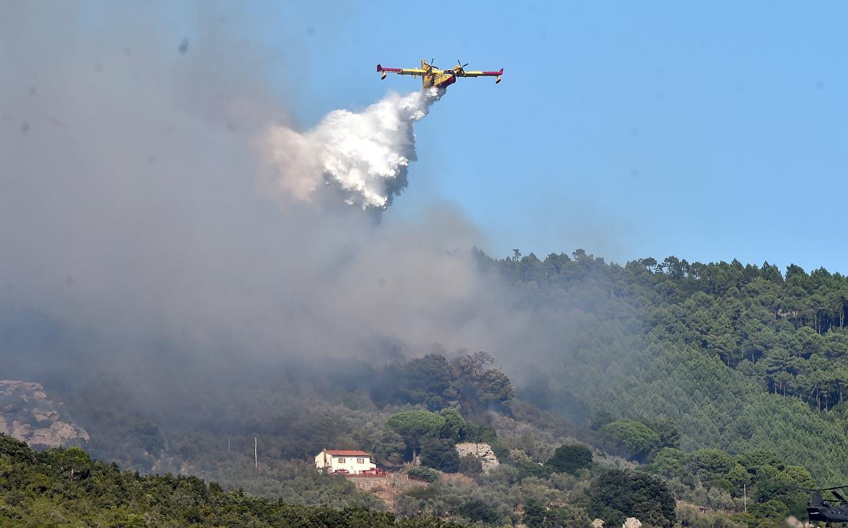 В Италии продолжают бороться с лесными пожарами / REUTERS