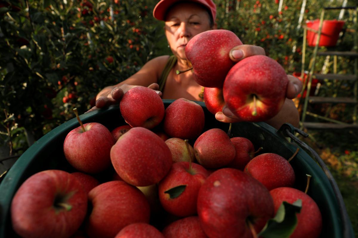 Понад 90% заробітчан не планують працювати в Україні / REUTERS