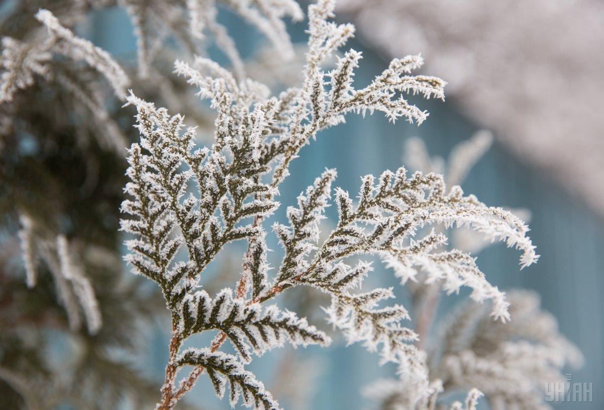 Завтра в Украине ожидается до 15° мороза / УНИАН
