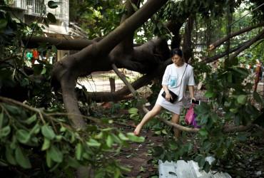"""Чотири людини загинули в результаті тайфуну """"Мангхут"""" на півдні Китаю"""
