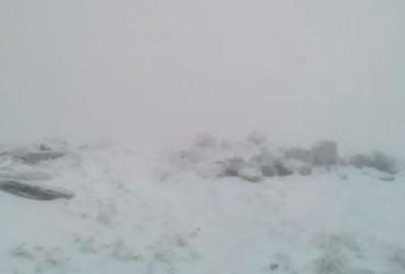 В Украине выпал первый снег: появилось видео