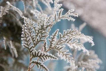 Укргидрометцентр предупреждает о сильных заморозках