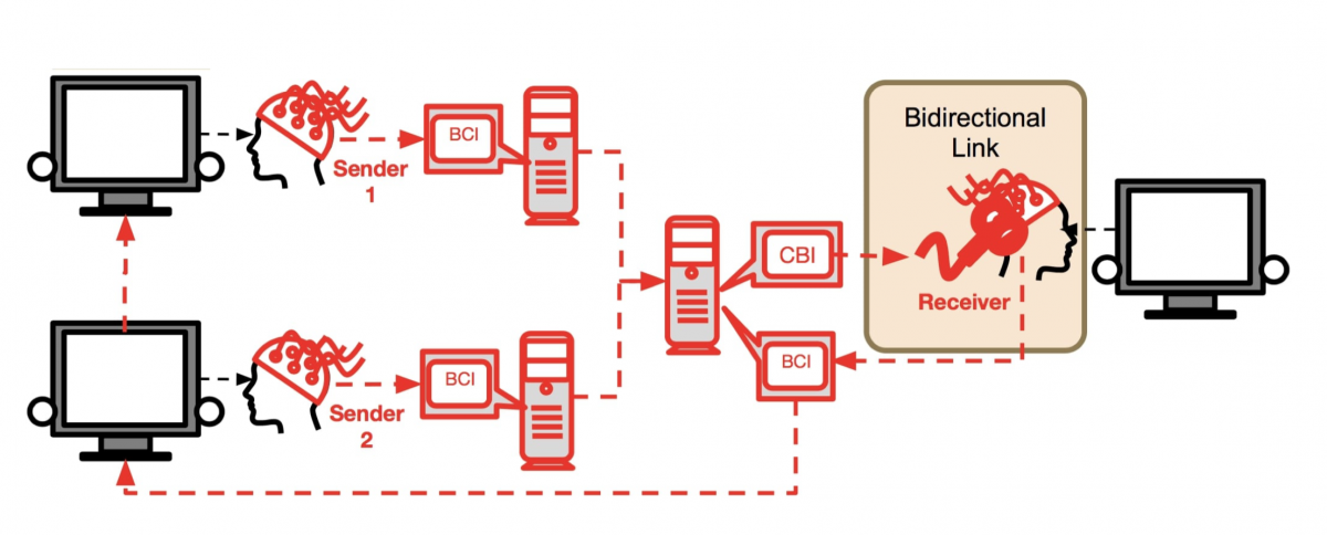 Архитектура BrainNet. BCI – интерфейсы «мозг – компьютер»; CBI – интерфейс «компьютер – мозг» / фото Jiang et al.
