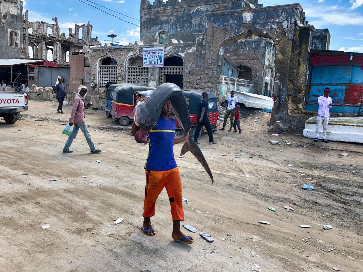 В Сомалиидешь по улице и видишь, как тащат акулу на спине / фото Facebook Константина Симоненко